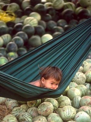 Hammock au Cambodge