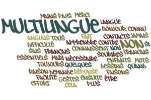 Multilingue Non