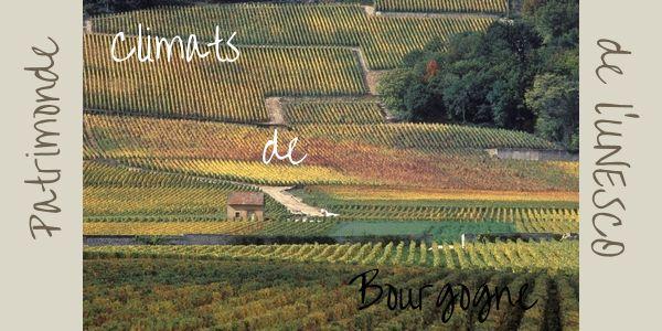 1247 climats de Bourgogne au patrimoine de l'Unesco